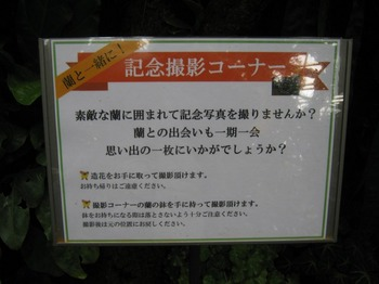 s_IMG_1027.JPG