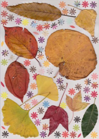 s_leaf-1.png