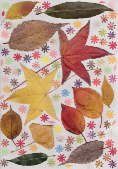 s_leaf-3.png